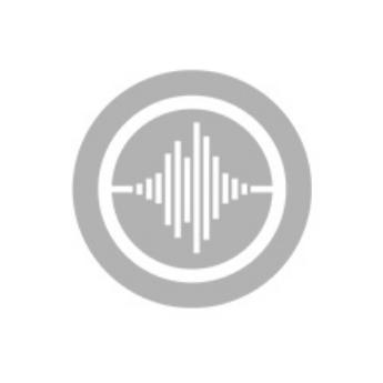 Picture for manufacturer Soundwave